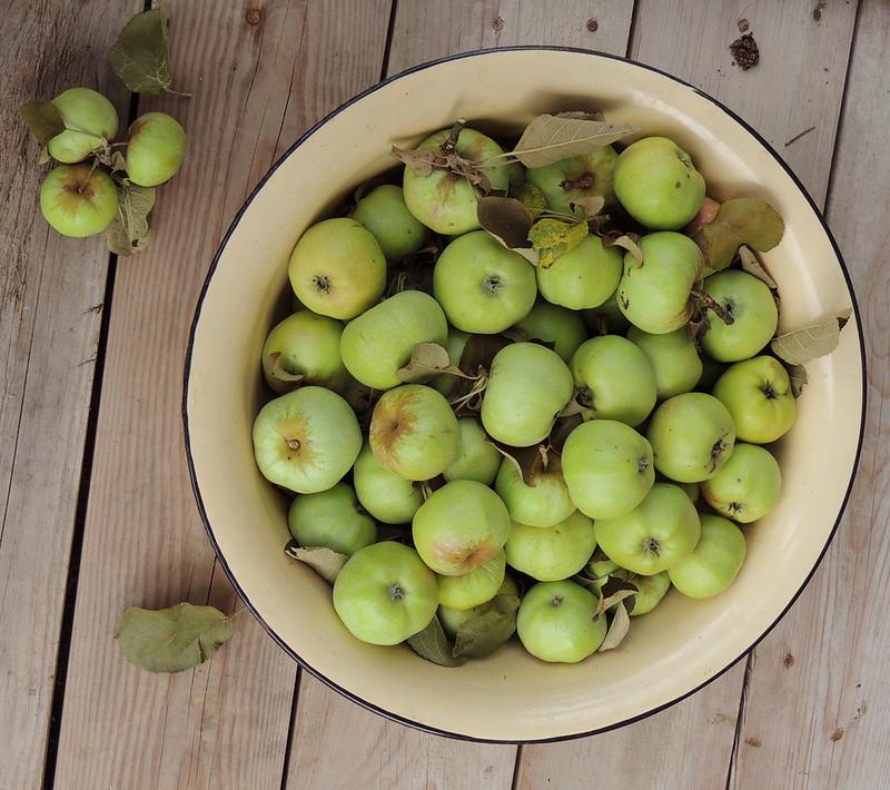 яблоки 2