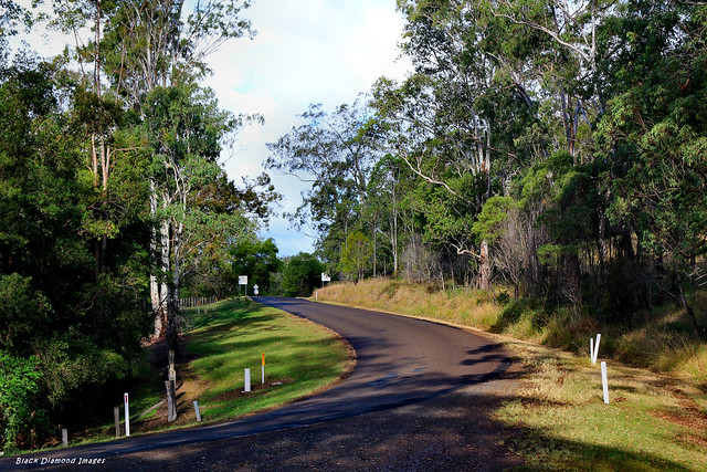Bulga Road Just East of Bobin Primary School 10th June 2014
