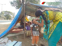 immunisation pulse polio