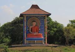 Sri Lanka - Landscape & NP's