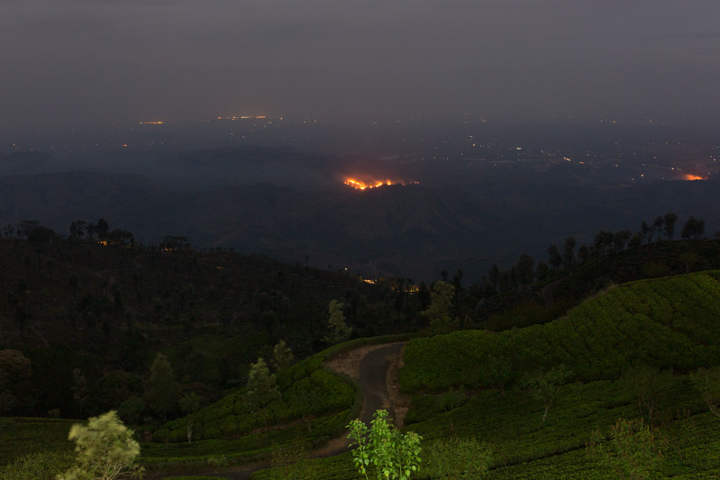 bush fires, Haputale