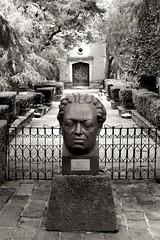 Museo Dolores Olmedo