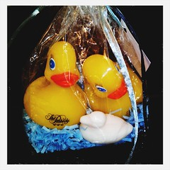 Three ducks @ The Peabody Hotel
