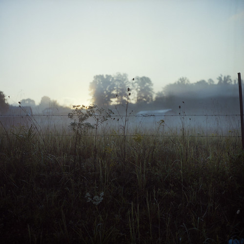 morning plants mist 120 film fog sunrise fence dawn weeds kodak iso400 tennessee september barbedwire portra400nc dayton 2010 colornegative 6x6cm rolleicordiii