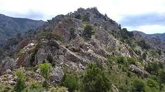 Crête Barcalinu-Cornodello : à l'approche du contournement de la pointe 1474