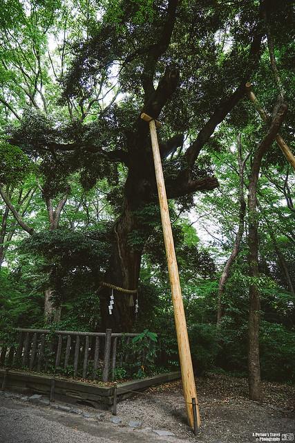 2014_Summer_SanyoArea_Japan_CH1_EP2-13