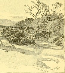 "Image from page 470 of ""The boy travellers in Australasia : adventures of two youths in a journey to the Sandwich, Marquesas, Society, Samoan and Feejee islands, and through the colonies of New Zealand, New South Wales, Queensland, Victoria, Tasmania, and"