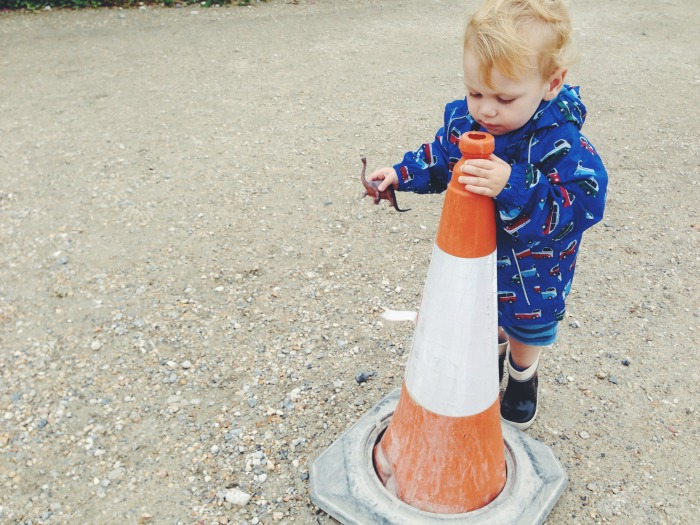 capturing-colour-orange-cone