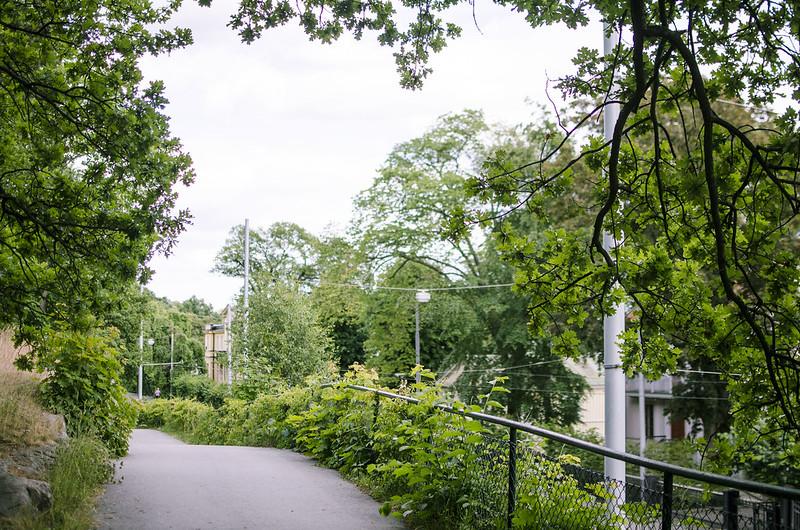 Djurgården.