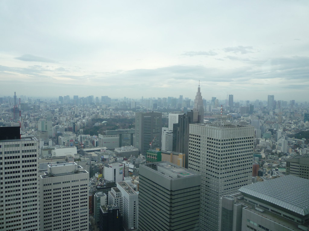 Tokyo Metropolitan Building View