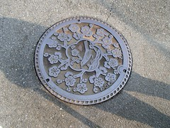 iron, manhole, manhole cover, circle, road surface,