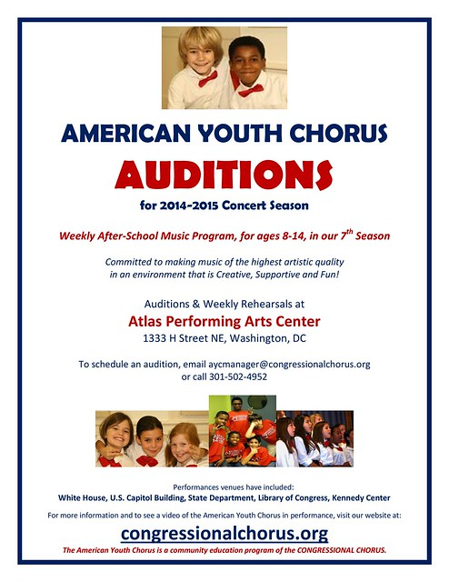 AYC Audition Flyer 2014-2015 - Copy-page-001