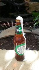 Beer Fountain in my Garden