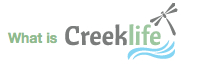 What is Creeklife?