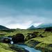 Fototouren Island - Láguhvolar - Mosaland – Skálarfjall - Fotoreise Natur- und Landschaftsfotografie by Niederrhein Foto