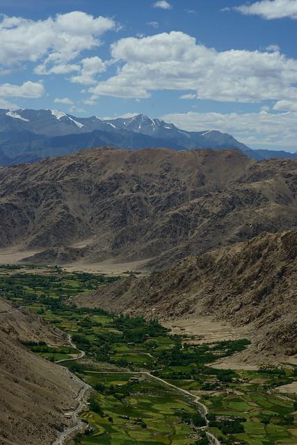 Valley view. Ladakh, 10 Aug 2014. 502