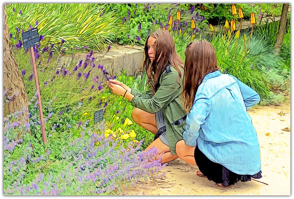 Jóvenes fotógrafas