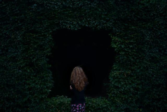 mark7image - The Hole
