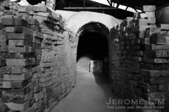 JeromeLim 277A0333