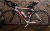 Wilier Bike