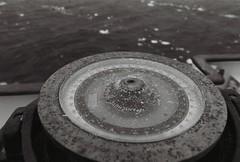 Antarctica Lost Film (1)