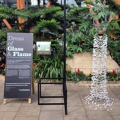 Dress of Glass & Flame by Professor Helen Storey. #festivalofthemind #sheffield