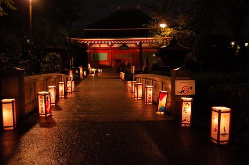 Asakusa lantern night 03