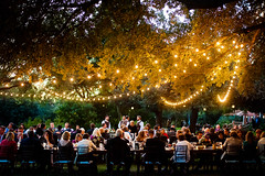 Festoon string lighting