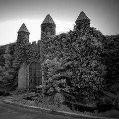 The Gatehouse - #noky #abandoned #suburbex