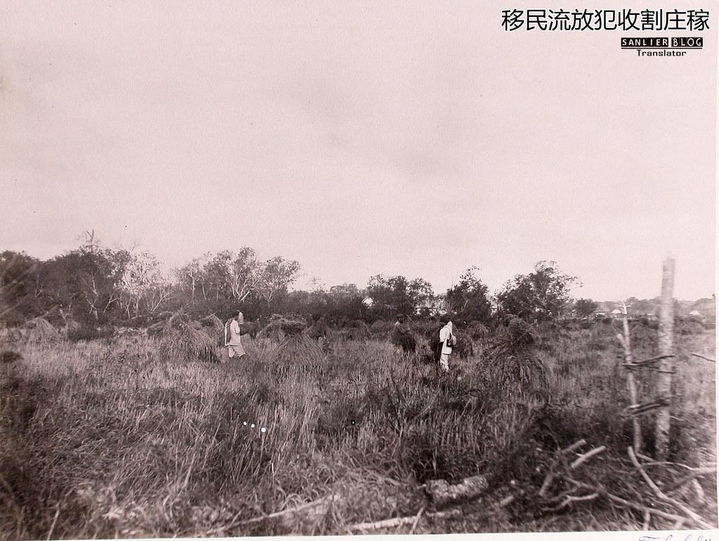 1891年萨哈林岛50