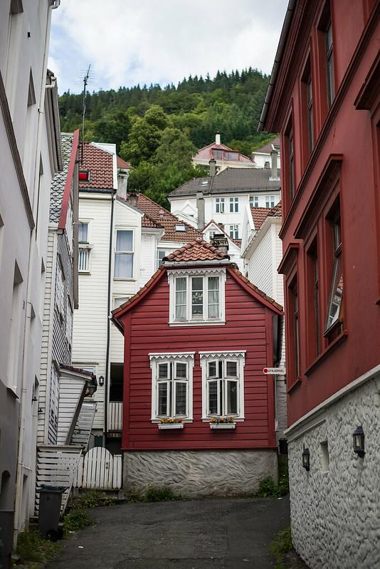 Norge roadtrip-184