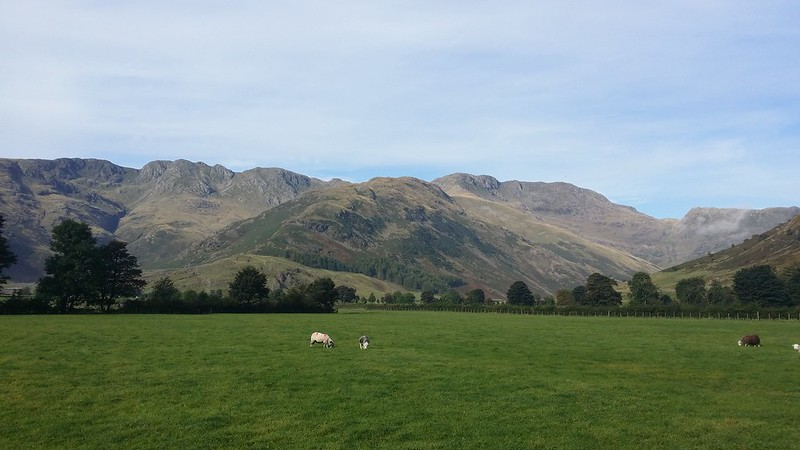 Upper Langdale from the NT campsite