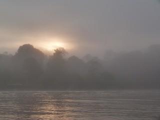 Río Kinabatangan (Borneo, Malasia)