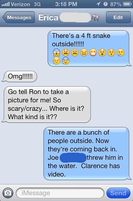 Snake At Work