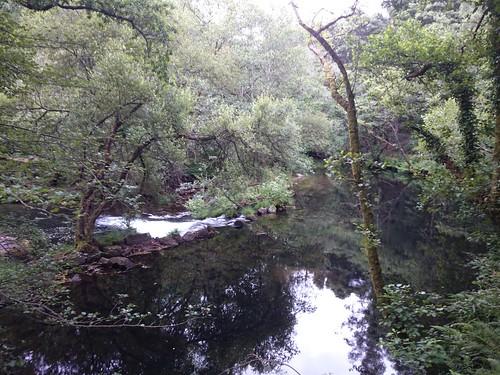 Umia en Ponte do Ramo
