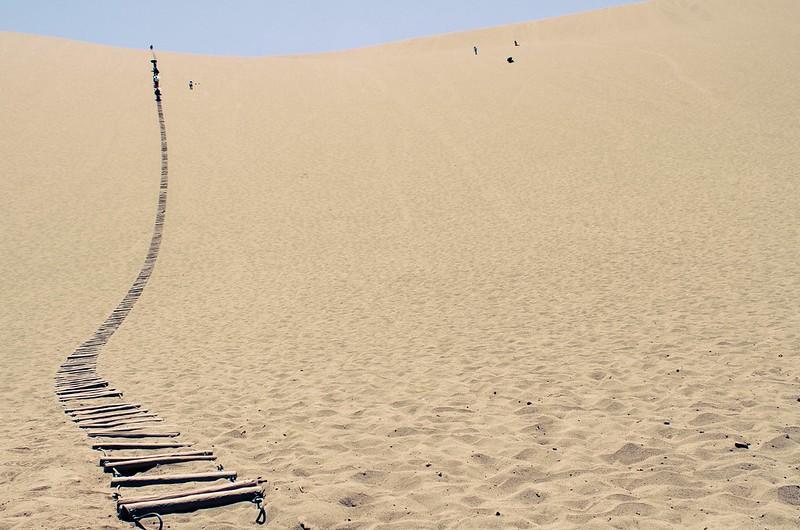 22/365: Desert Trek