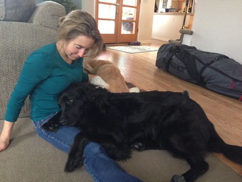 Last minute dog snuggles