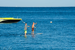 surface water sports, vehicle, sports, sea, surfing, ocean, boating, wind wave, water sport, stand up paddle surfing, surfboard, boat, paddle,