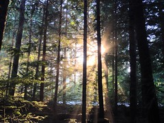 Loggers Lake – Whistler, BC