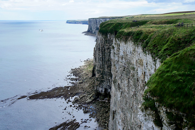 yorkshire cliffs
