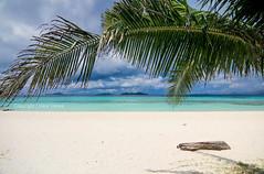 The serene beach of Malcapuya Island, Palawan
