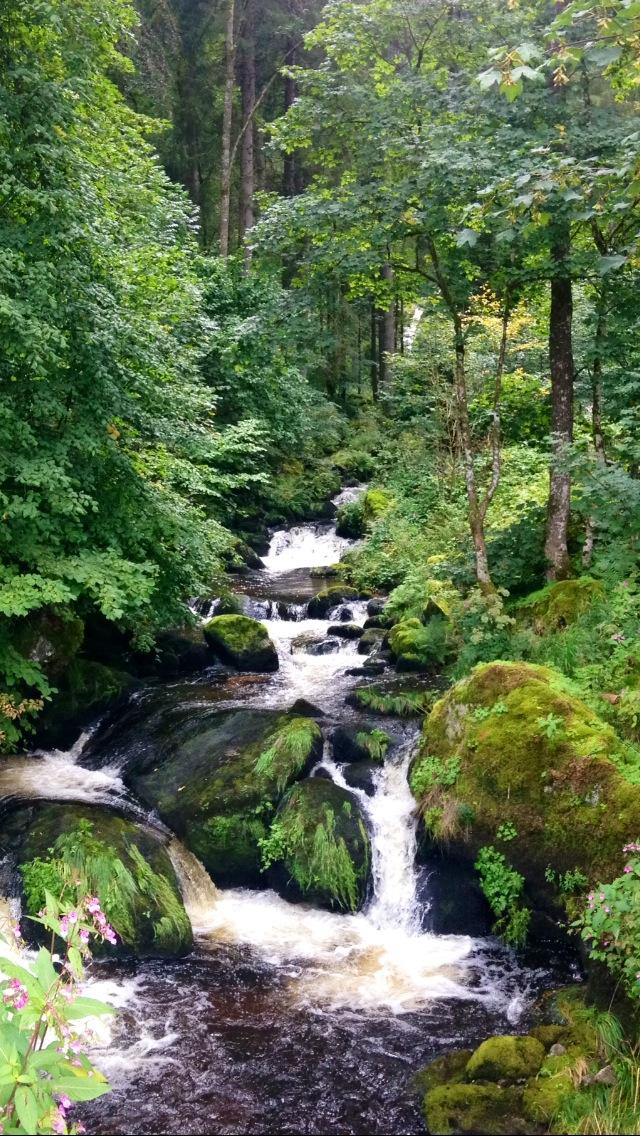Waterfall - Germany