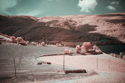 longexposure italien trees summer italy landscape ir infrared fujifilm marche semester 2014 falsecolour r72 fossombrone xpro1 hoyairfilter fujinonxf35mm invertedcolorchannels