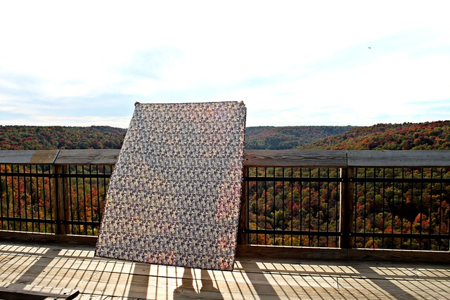 An Autumn Sun Quilt, backing in Fly By Night