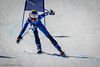 Skier
