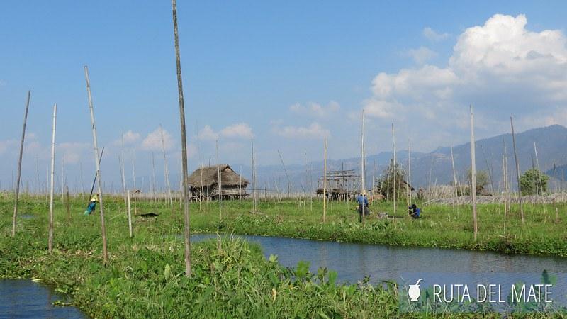 Lago Inle Myanmar (29)