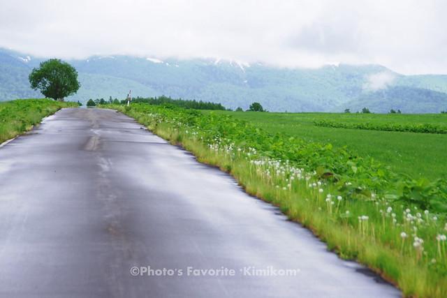 上川町-旭ヶ丘農業公園4