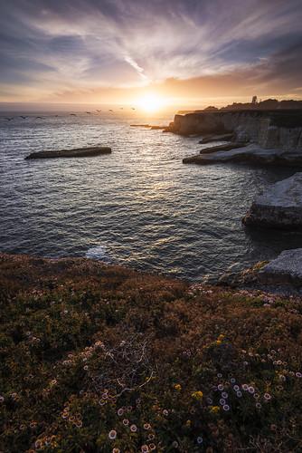 like icarus | davenport, california