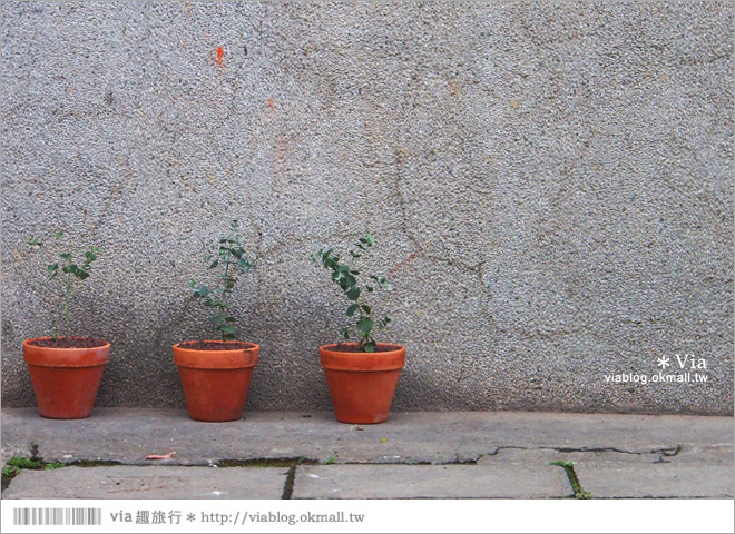 【台中新景點】中興街一巷‧范特喜「綠光計劃」~自來水公司舊眷宿舍的新藝文空間25