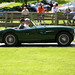E Type Day - Austin-Healey